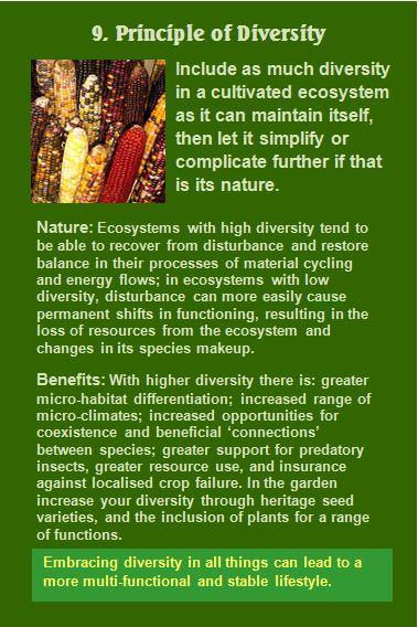 9. Principle of Diversity