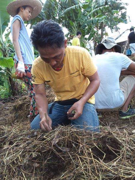 Paulus completed his PDC in the Philippines in 2015 and will be managing the alley crop trial in his home village in Borneo.